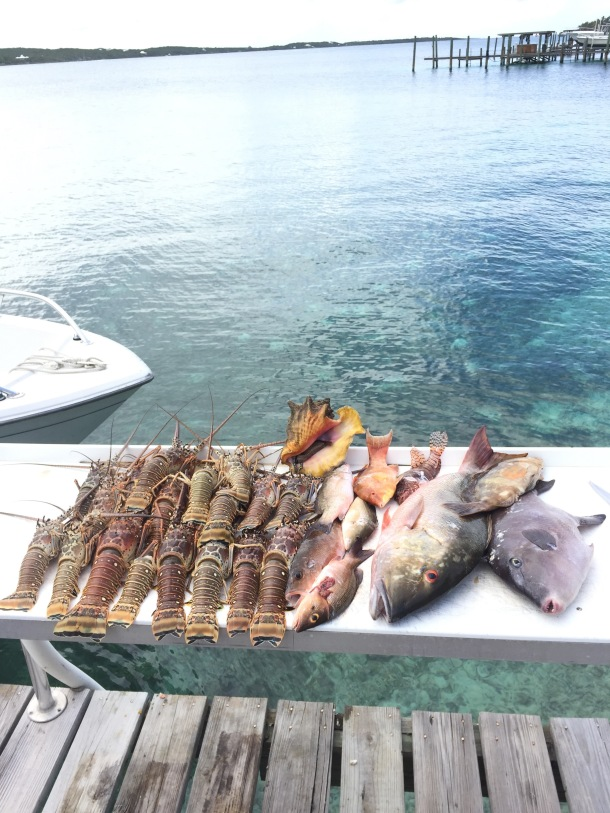 more-fishing-abaco